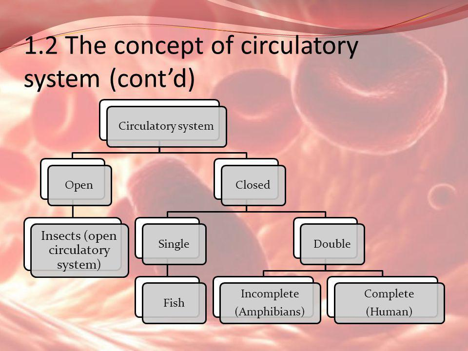 1.2 The concept of circulatory system (cont'd) Circulatory systemOpen Insects (open circulatory system) ClosedSingleFishDouble Incomplete (Amphibians)