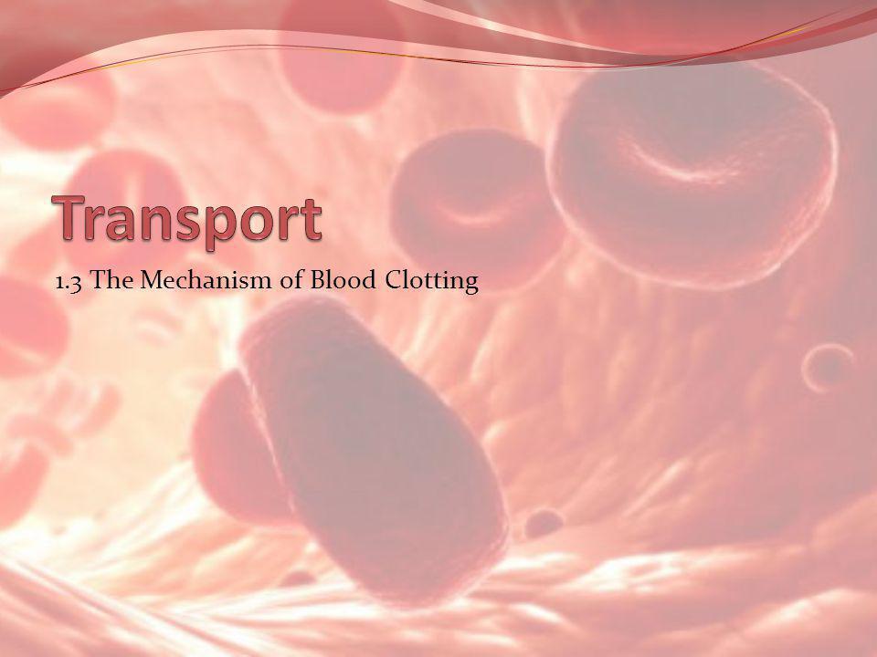 1.3 The Mechanism of Blood Clotting