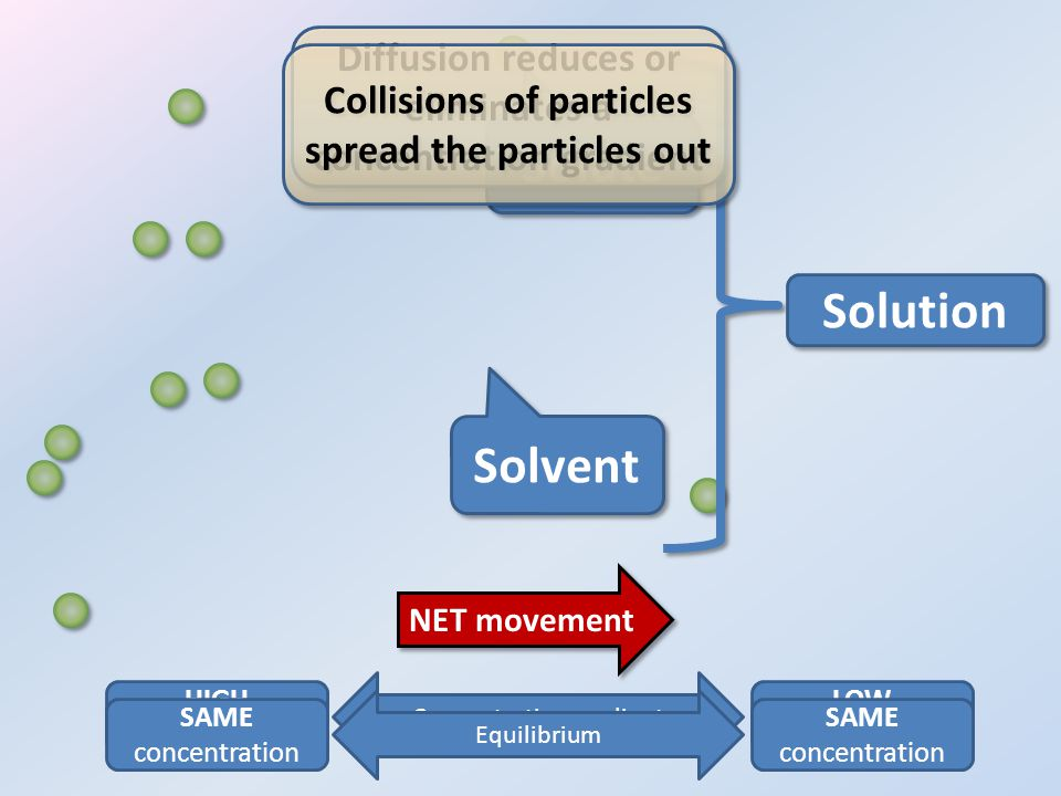 Solute Solvent HIGH concentration LOW concentration Concentration gradient SAME concentration SAME concentration Equilibrium Solution NET movement Diffusion reduces or eliminates a concentration gradient Diffusion reduces or eliminates a concentration gradient Collisions of particles spread the particles out Collisions of particles spread the particles out