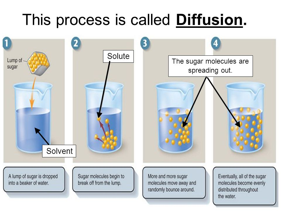 Molecules always move from HIGH concentration to LOW concentration.