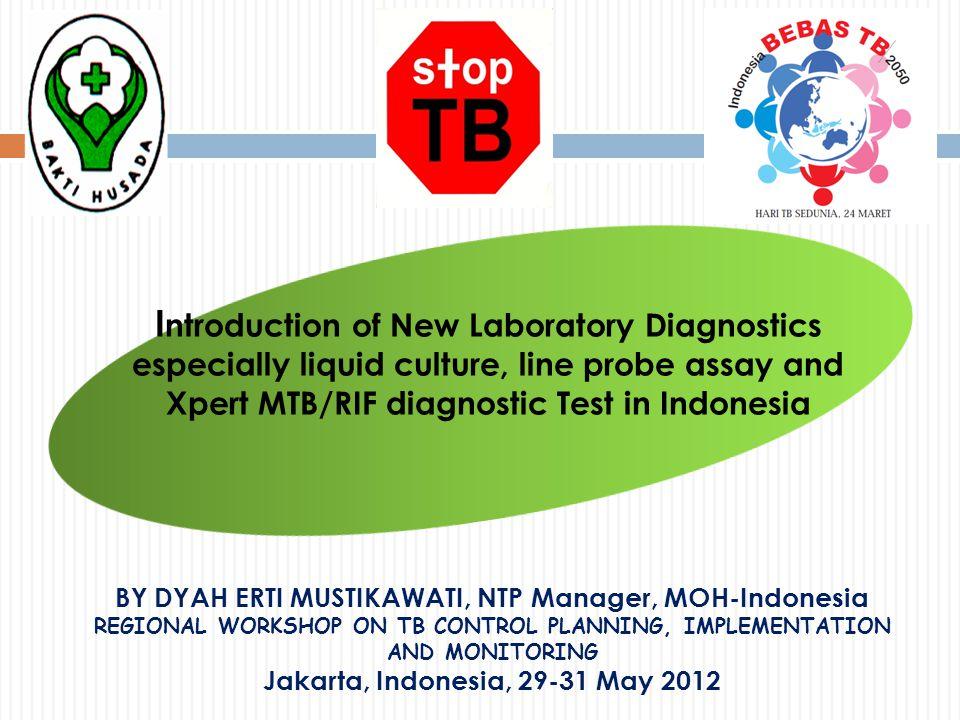 12 Renovation of TB Culture/DST Lab: BLK Jayapura, Papua
