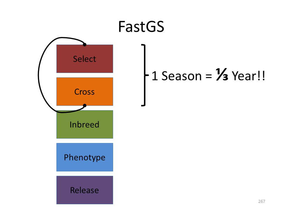 Release Select Cross Inbreed Phenotype FastGS 1 Season = ⅓ Year!! 267