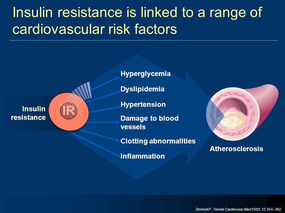 Insulin resistance is linked to a range of cardiovascular risk factors Atherosclerosis Hyperglycemia Dyslipidemia Hypertension Damage to blood vessels
