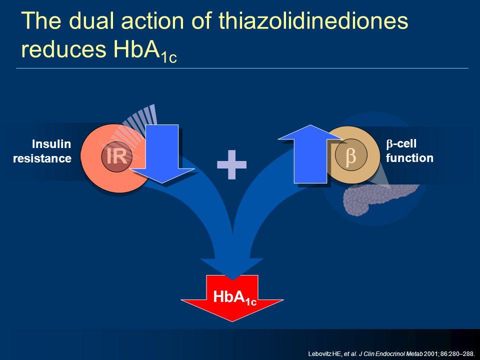 The dual action of thiazolidinediones reduces HbA 1c + HbA 1c Insulin resistance IR  -cell function  Lebovitz HE, et al. J Clin Endocrinol Metab 200