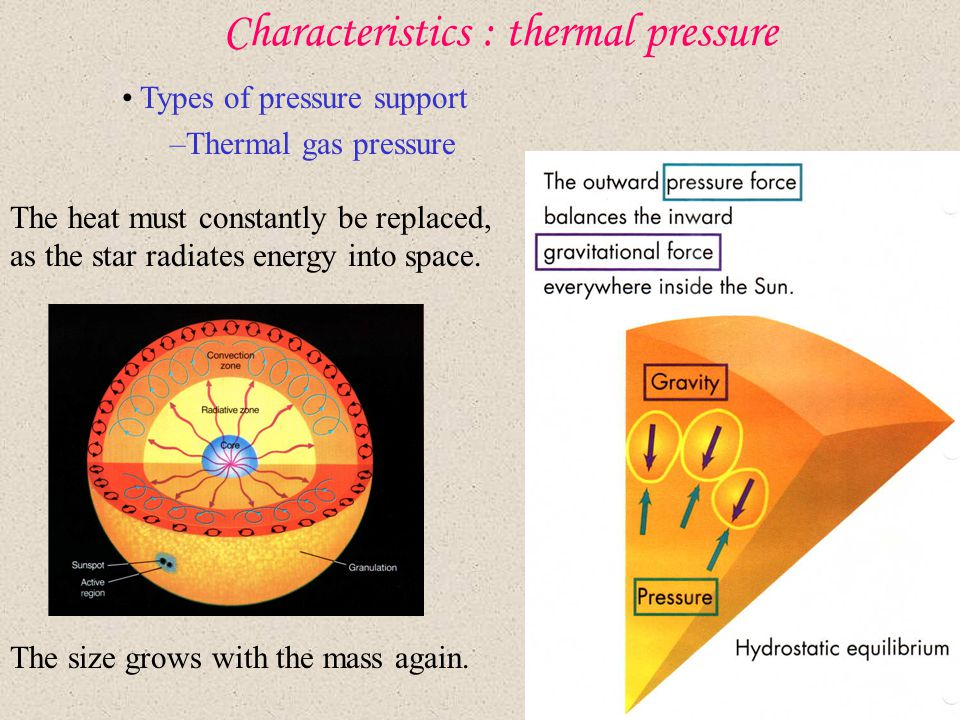 Characteristics : thermal pressure Types of pressure support –Thermal gas pressure The heat must constantly be replaced, as the star radiates energy i