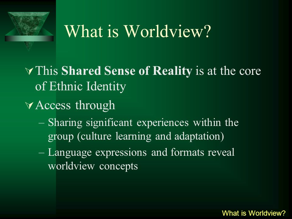What is Worldview.