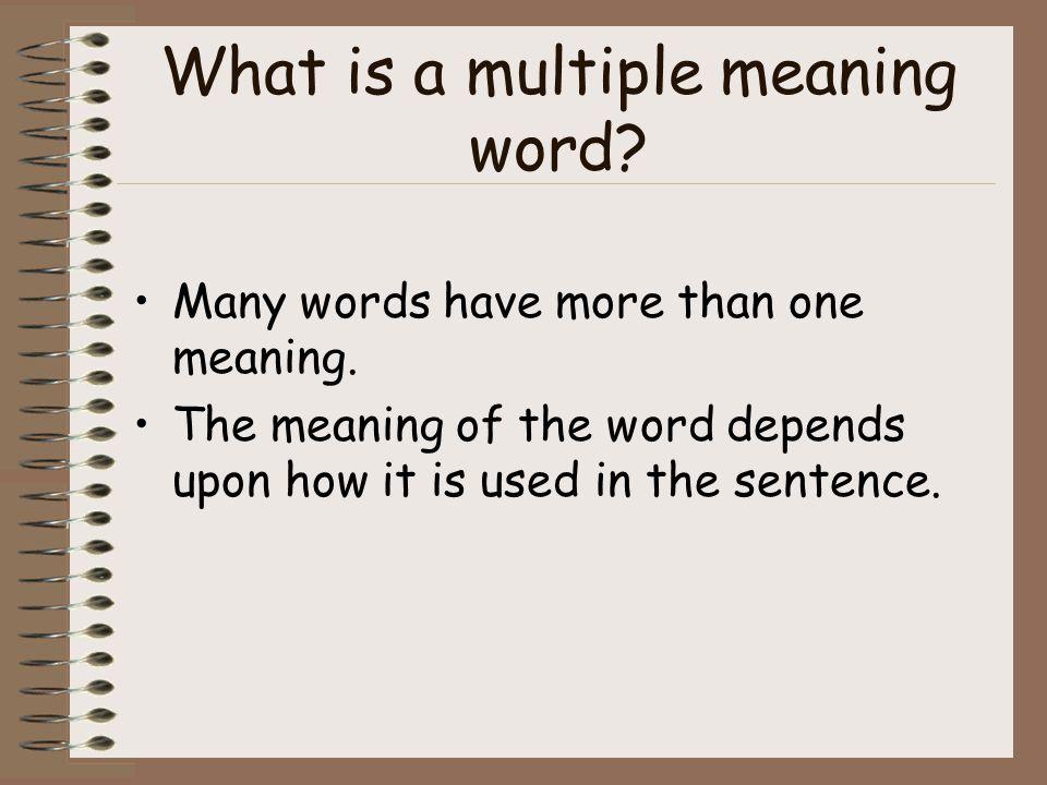 Which Word Works? Grade 2 Language Arts