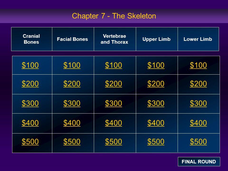 Chapter 7 - The Skeleton $100 $200 $300 $400 $500 $100$100$100 $200 $300 $400 $500 Cranial Bones Facial Bones Vertebrae and Thorax Upper Limb Lower Limb FINAL ROUND