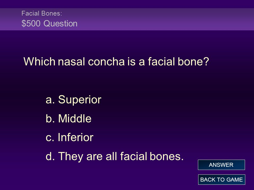 Facial Bones: $500 Question Which nasal concha is a facial bone? a. Superior b. Middle c. Inferior d. They are all facial bones. BACK TO GAME ANSWER