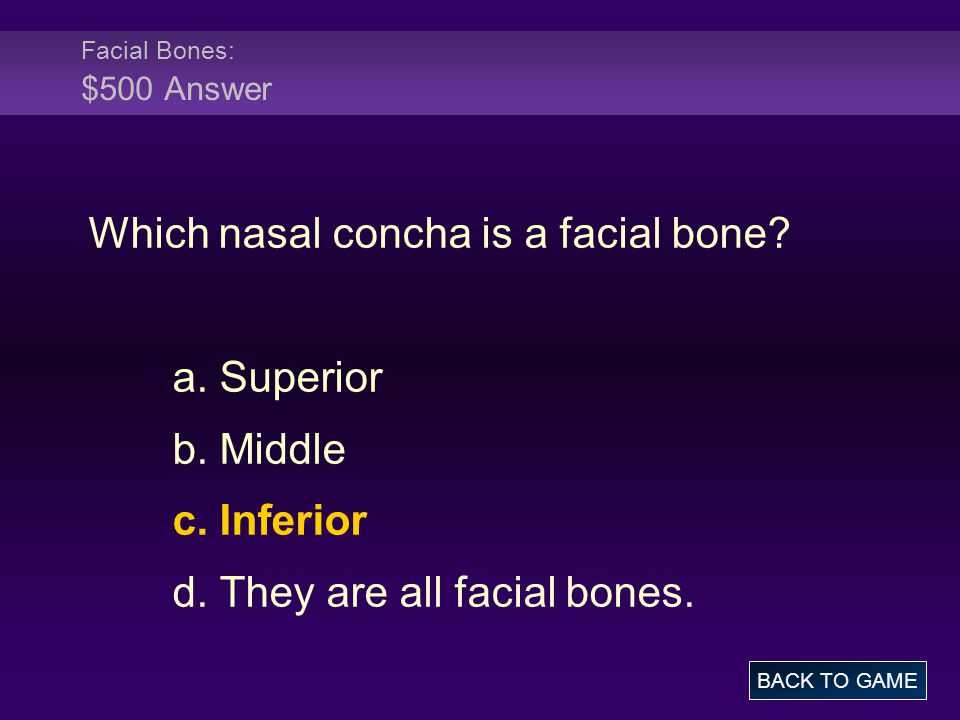 Facial Bones: $500 Answer Which nasal concha is a facial bone? a. Superior b. Middle c. Inferior d. They are all facial bones. BACK TO GAME