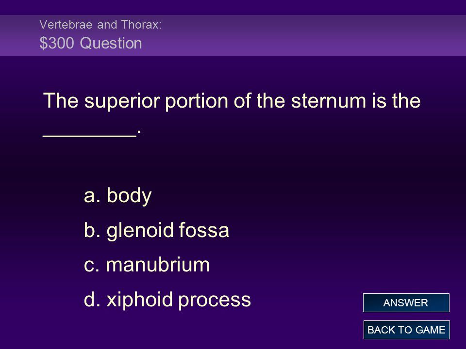 Vertebrae and Thorax: $300 Question The superior portion of the sternum is the ________. a. body b. glenoid fossa c. manubrium d. xiphoid process BACK