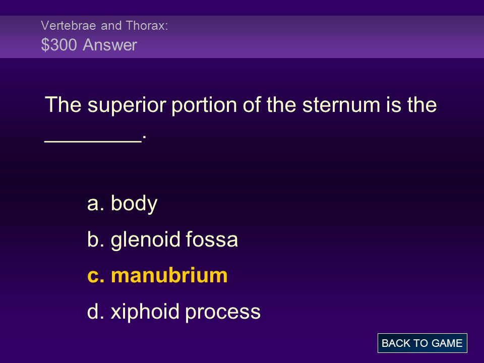 Vertebrae and Thorax: $300 Answer The superior portion of the sternum is the ________. a. body b. glenoid fossa c. manubrium d. xiphoid process BACK T