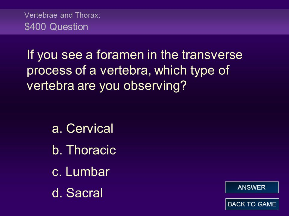 Vertebrae and Thorax: $400 Question If you see a foramen in the transverse process of a vertebra, which type of vertebra are you observing.