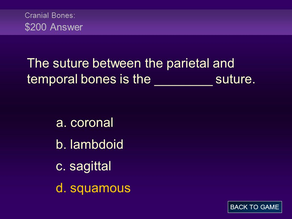 Cranial Bones: $200 Answer The suture between the parietal and temporal bones is the ________ suture.