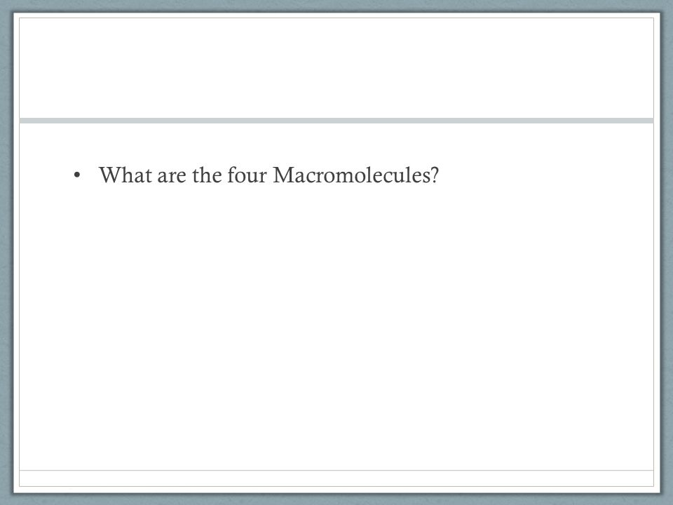 What are the four Macromolecules?