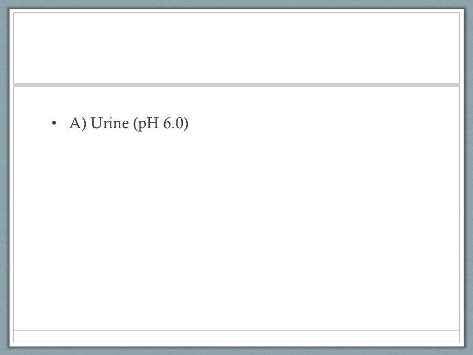 A) Urine (pH 6.0)