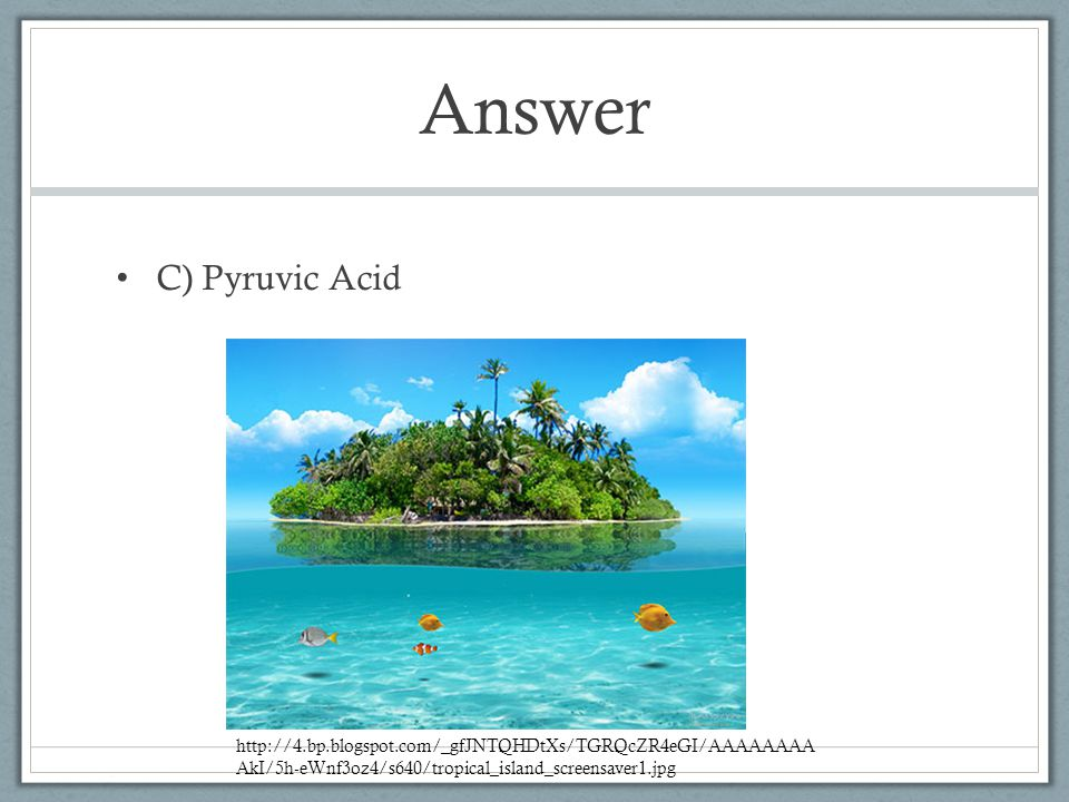 Answer C) Pyruvic Acid http://4.bp.blogspot.com/_gfJNTQHDtXs/TGRQcZR4eGI/AAAAAAAA AkI/5h-eWnf3oz4/s640/tropical_island_screensaver1.jpg