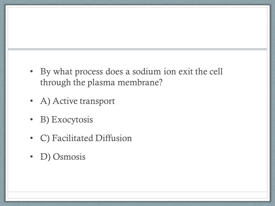 By what process does a sodium ion exit the cell through the plasma membrane.