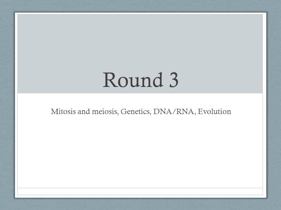 Round 3 Mitosis and meiosis, Genetics, DNA/RNA, Evolution