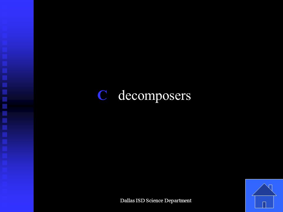 Dallas ISD Science Department C decomposers