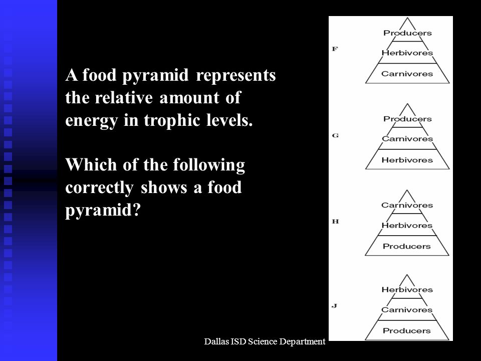 Dallas ISD Science Department A food pyramid represents the relative amount of energy in trophic levels.