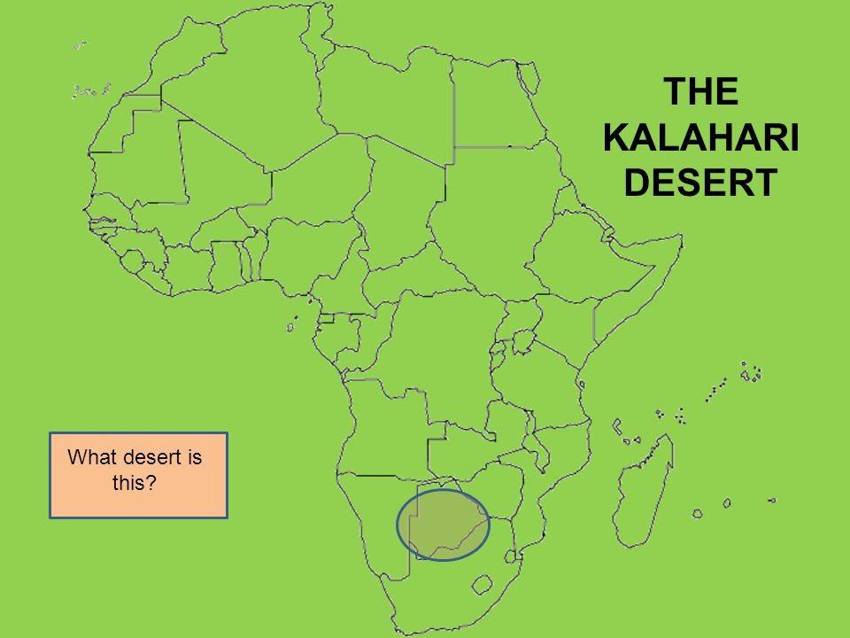 What desert is this? THE KALAHARI DESERT