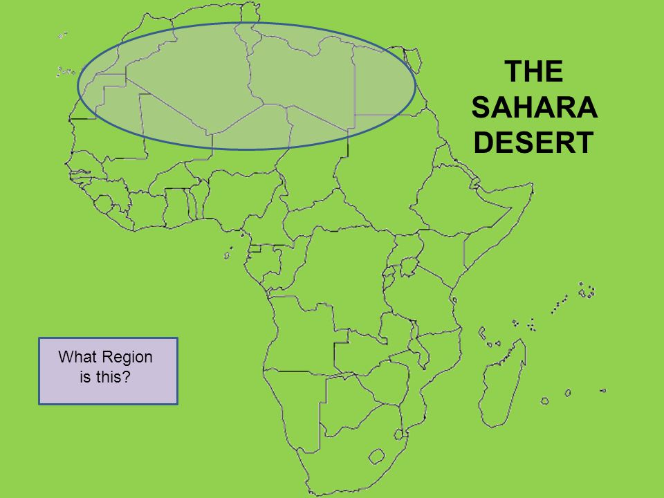 What Region is this? THE SAHARA DESERT
