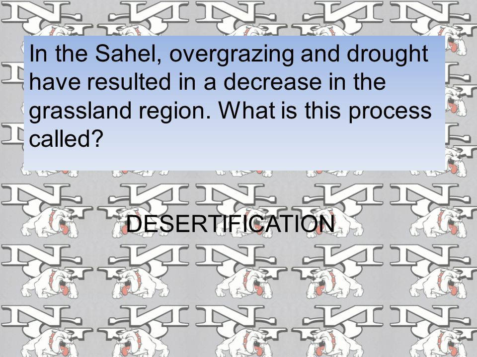 In the Sahel, overgrazing and drought have resulted in a decrease in the grassland region. What is this process called? DESERTIFICATION