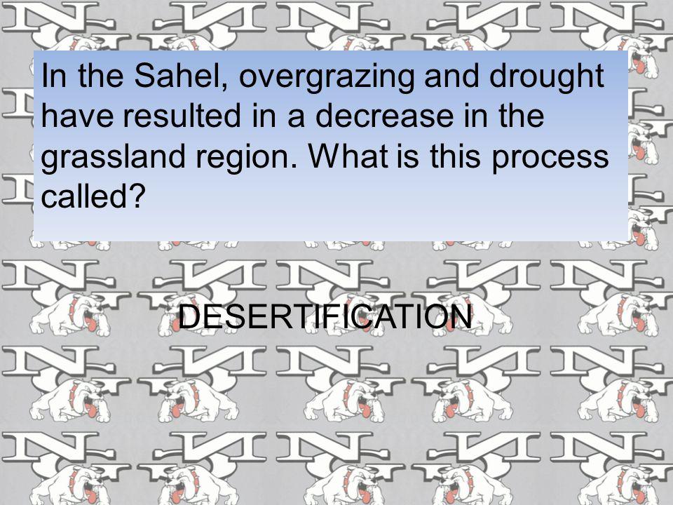 What one word describes the savanna? Grasslands
