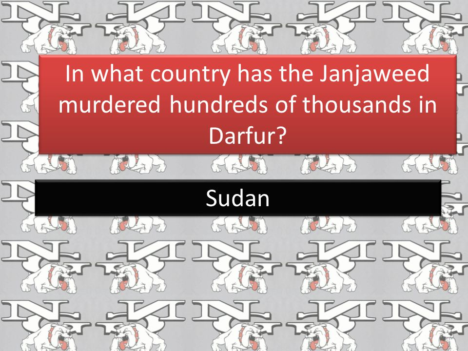 In what country has the Janjaweed murdered hundreds of thousands in Darfur? Sudan