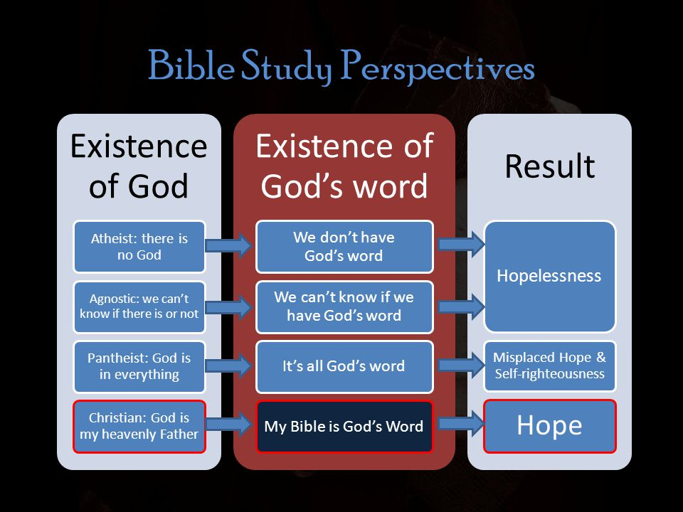 Bible Study Perspectives Existence of God Atheist: there is no God Agnostic: we can't know if there is or not Pantheist: God is in everything Christian: God is my heavenly Father Existence of God's word We don't have God's word We can't know if we have God's word It's all God's wordMy Bible is God's Word Result Hopelessness Misplaced Hope & Self-righteousness Hope