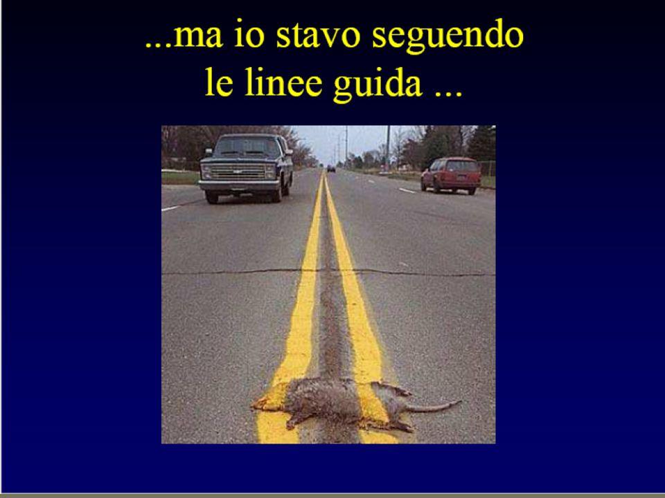 Modena 24/05/2014