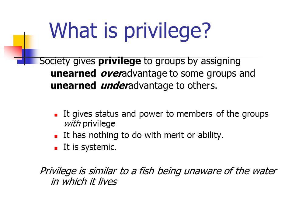 Many kinds of privilege White privilege Heterosexual privilege Able-bodied privilege Class privilege Privilege based on religion Privilege based on gender Privilege based on formal education