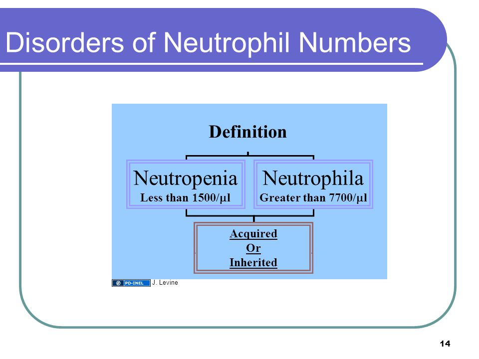 Disorders of Neutrophil Numbers Definition Neutropenia Less than 1500/  l Neutrophila Greater than 7700/  l Acquired Or Inherited 14 J. Levine