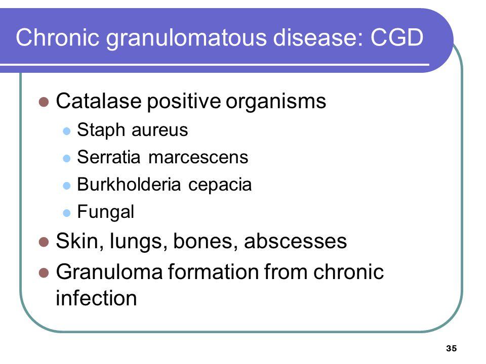 Chronic granulomatous disease: CGD Catalase positive organisms Staph aureus Serratia marcescens Burkholderia cepacia Fungal Skin, lungs, bones, absces