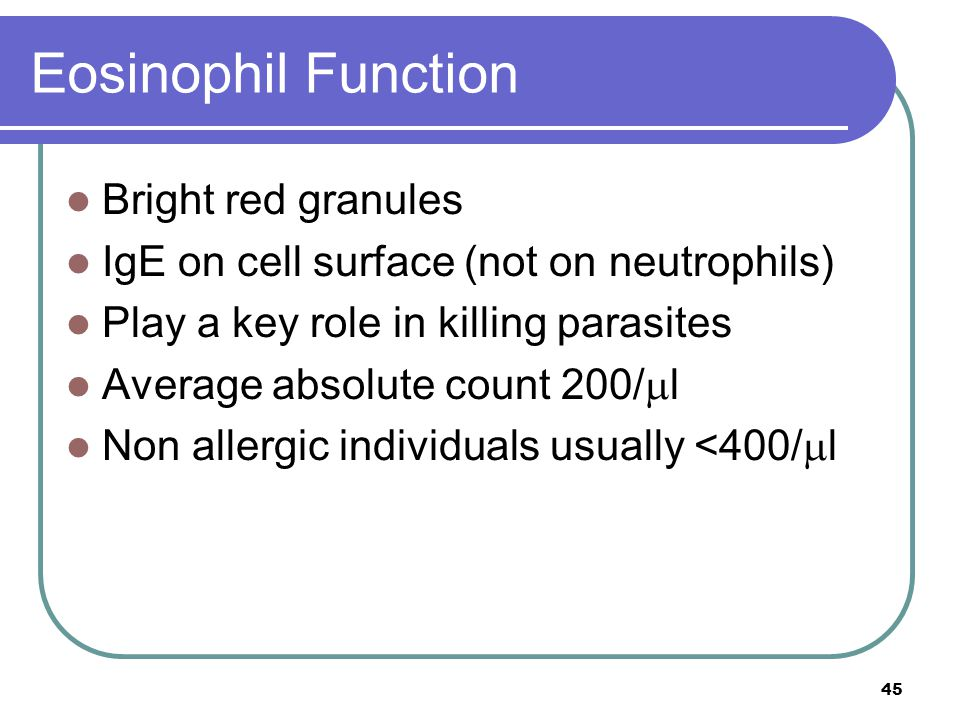 Eosinophil Function Bright red granules IgE on cell surface (not on neutrophils) Play a key role in killing parasites Average absolute count 200/  l Non allergic individuals usually <400/  l 45