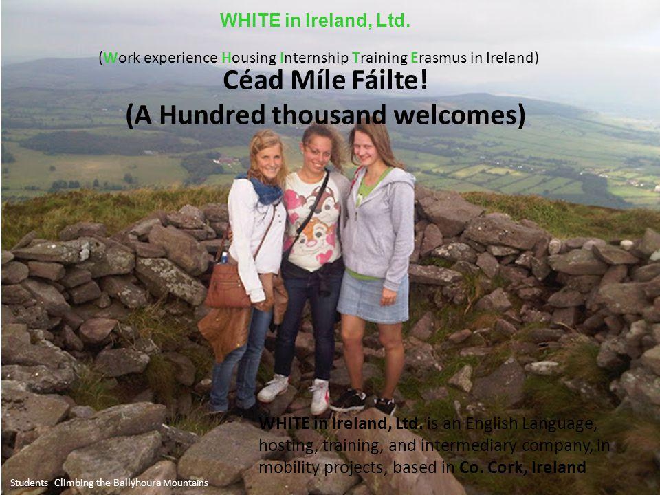 Students Climbing the Ballyhoura Mountains WHITE in Ireland, Ltd.