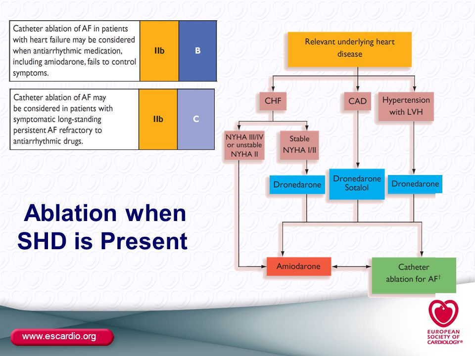 www.escardio.org Ablation when SHD is Present