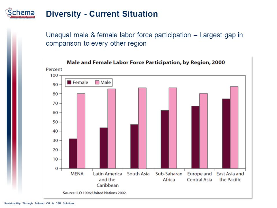 Unequal male & female labor force participation – Largest gap in comparison to every other region Diversity - Current Situation