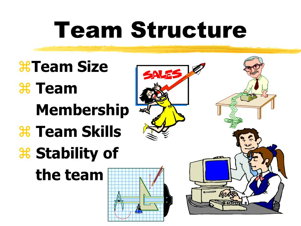 Team Structure zTeam Size z Team Membership z Team Skills z Stability of the team
