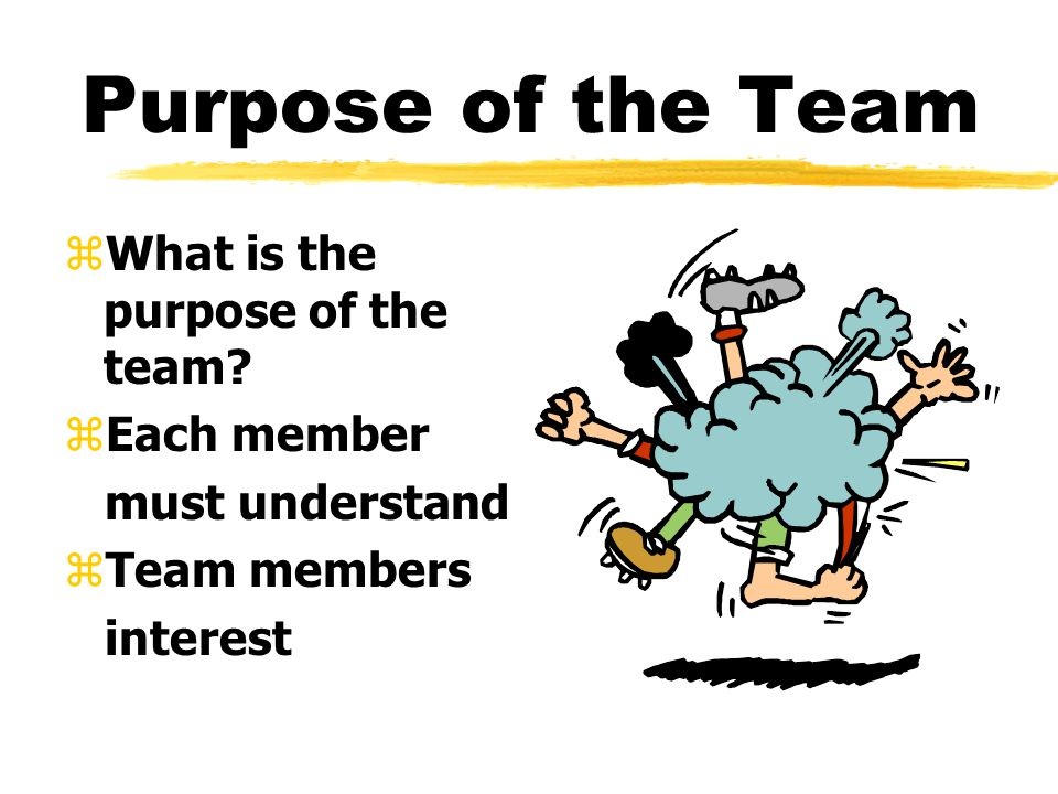 Purpose of the Team zWhat is the purpose of the team.