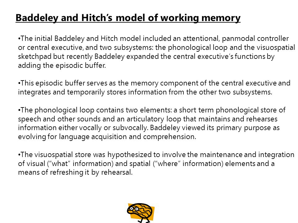 The initial Baddeley and Hitch model included an attentional, panmodal controller or central executive, and two subsystems: the phonological loop and