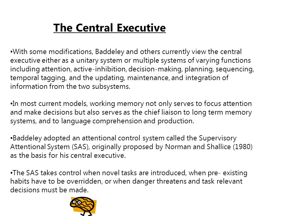 How and why does the central executive make its decisions.