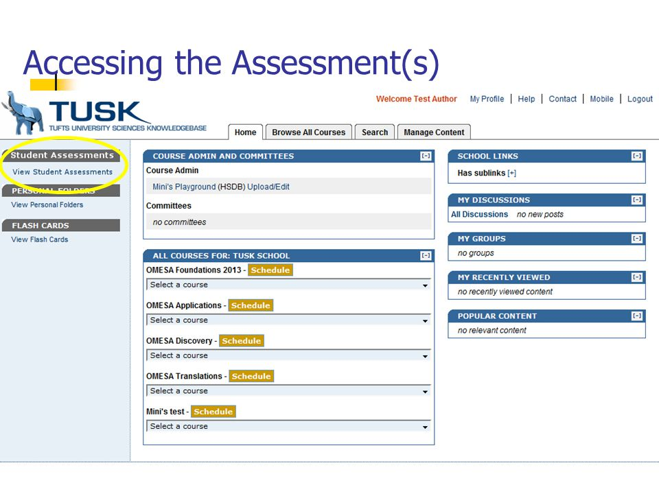 Accessing the Assessment(s)