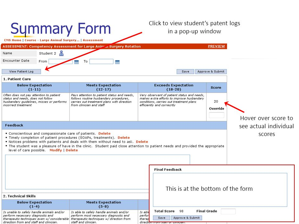 Summary Form Hover over score to see actual individual scores This is at the bottom of the form Click to view student's patent logs in a pop-up window