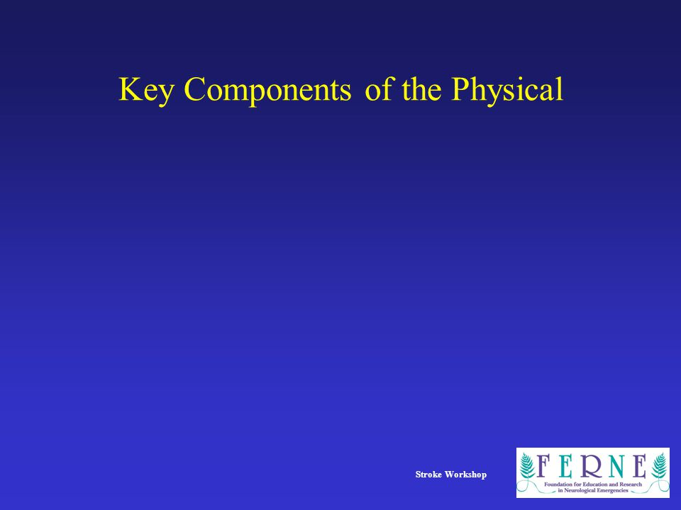 Stroke Workshop Key Components of the Physical