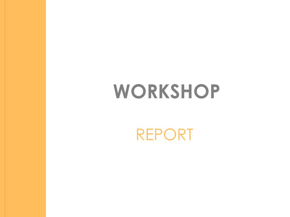 WORKSHOP REPORT