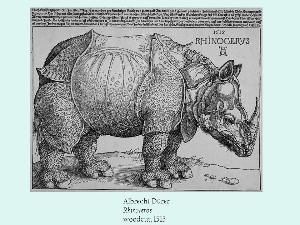Albrecht Dürer Rhinoceros woodcut, 1515