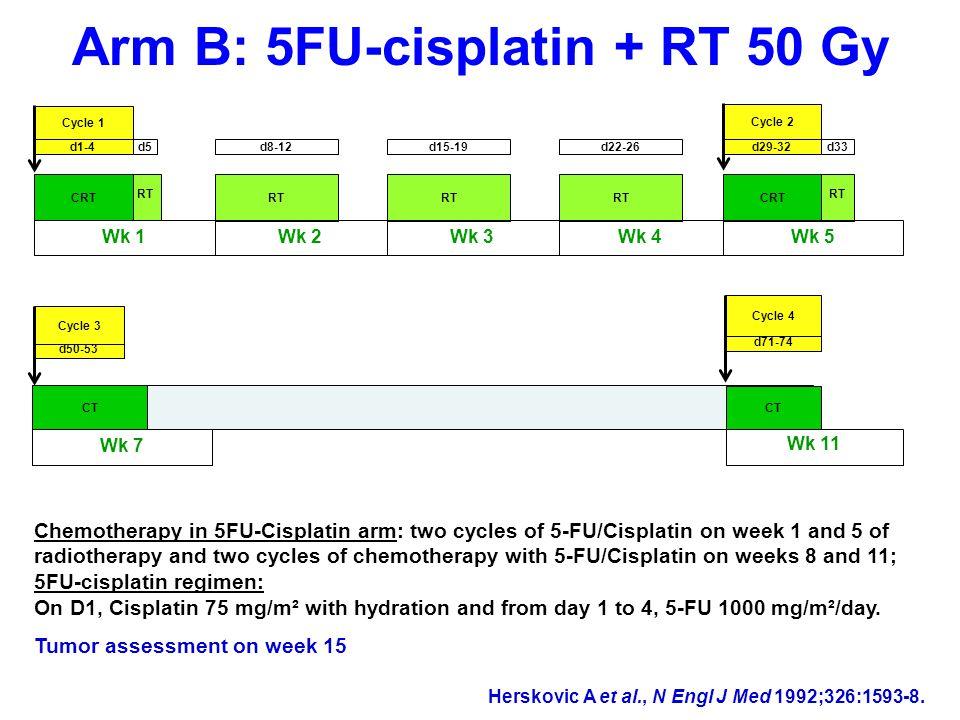 Safety: main nonhematologic AEs AE, % per patient Folfox N=131 5FU/cisplatin N=128 p-value all grades AllGrade 3/4AllGrade 3/4 Dysphagia41.22933.624.2NS Esophagitis25.26.930.512.5NS Fatigue53.417.646.99.4NS Vomiting25.23.832.82.4NS Mucositis26.76.932.02.30.011 Diarrhea15.31.514.80.7NS Alopecia 1.5- 9.4-0.006 Peripheral neuropathy18.3- 0.8-0.0001 Creatinine3.0011.73.90.036