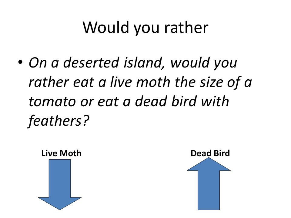 Would you rather On a deserted island, would you rather eat a live moth the size of a tomato or eat a dead bird with feathers.